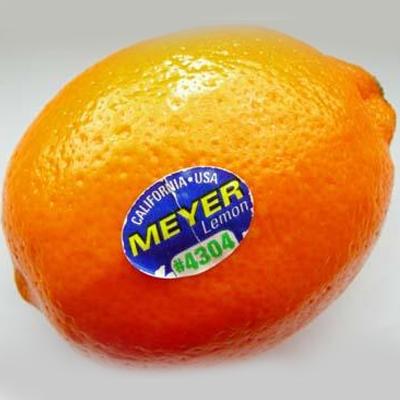 Oranje citroen