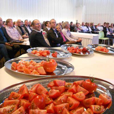 Honingtomaat verkozen tot beste tomaat van Nederland