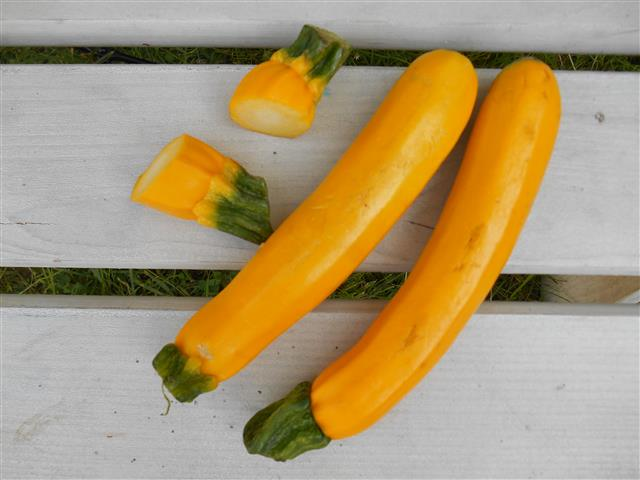gele-courgettes