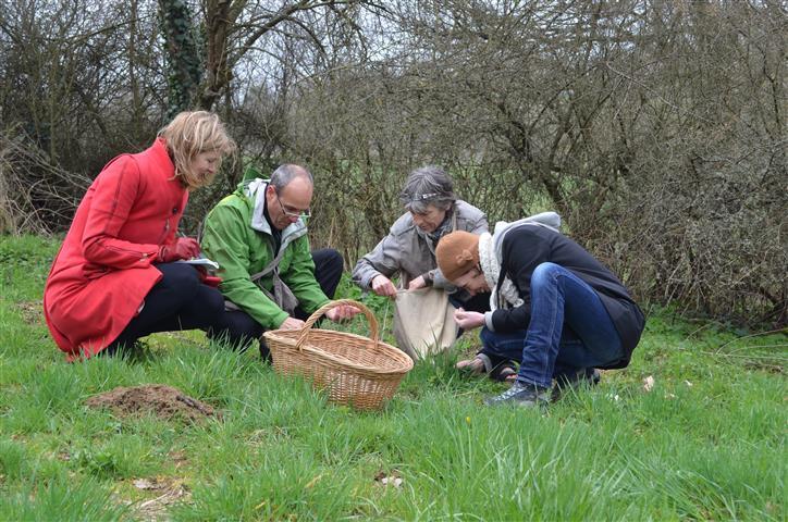 Auvergne wildplukken