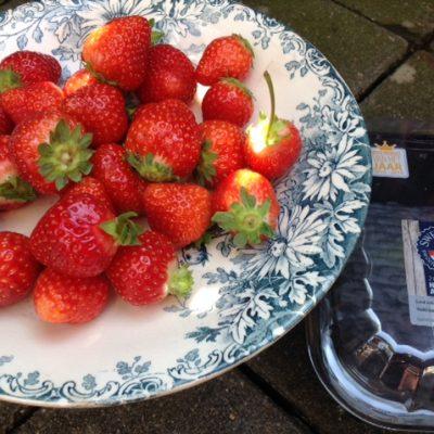 Sweet Eve aardbeien