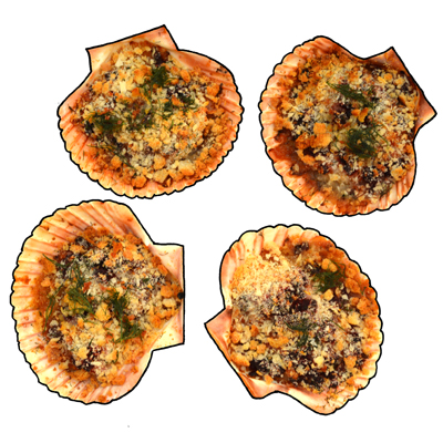 coquilles_ft