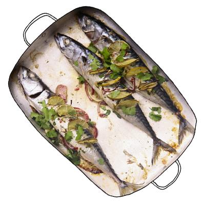 Oosterse makrelen